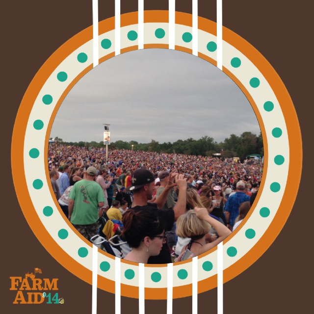 Farm Aid Crowd