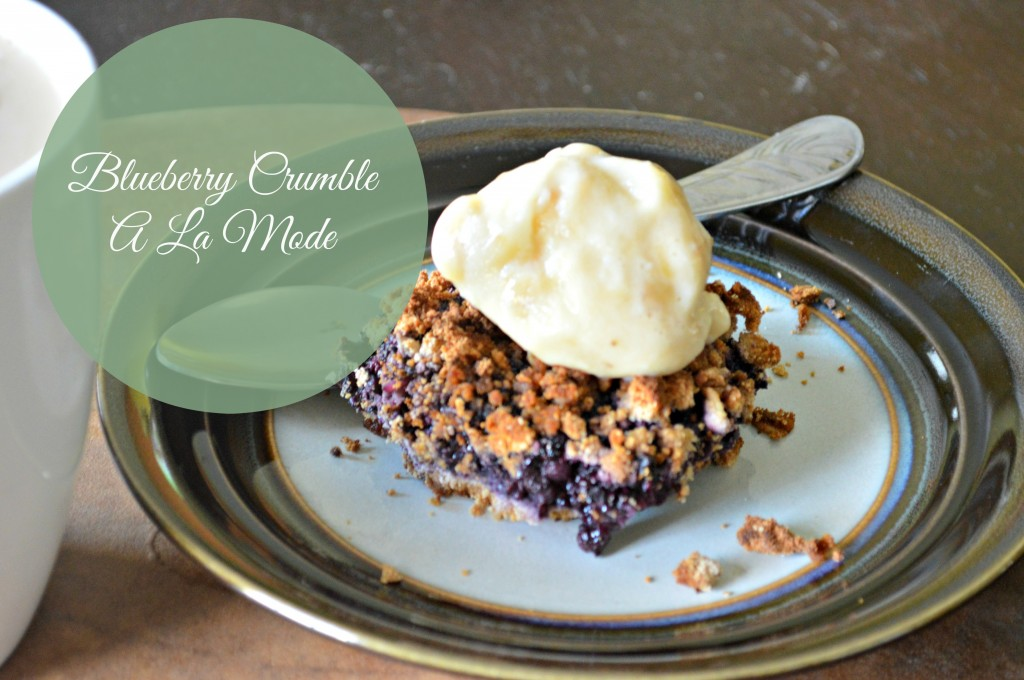 blueberry crumble pic
