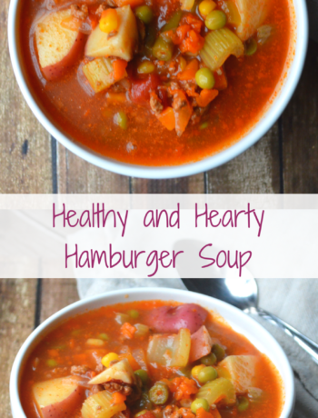 Hamburger Soup Banner
